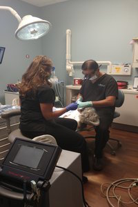 dental-patient-undergoing-a-sinus-lift-procedure